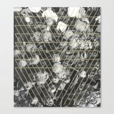 peonies Canvas Print
