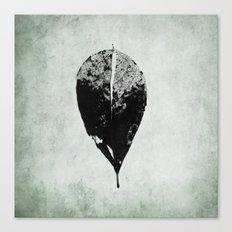leaf skeleton Canvas Print