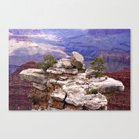Grand Canyon's Little Is… Canvas Print