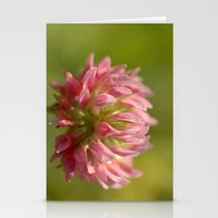 Pink Clover 5033 Stationery Cards