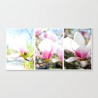 Blossom Triptych Canvas Print