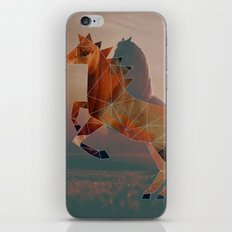 Horse with Horse iPhone & iPod Skin