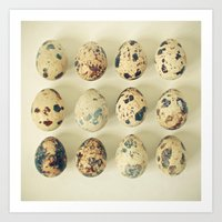 Quail Eggs Art Print