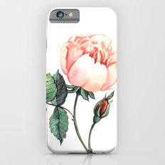 Illustration with watercolor rose Slim Case iPhone 6s