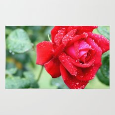 Rose by any other name Rug