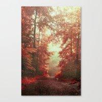 magical redwoods Canvas Print