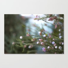 softly open our mouths Canvas Print