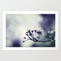 Spring In Black And Whit… Art Print