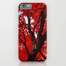 Red Canopy iPhone 6 Slim Case