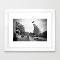 Inquisitive Seagull Framed Art Print