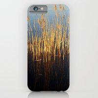 Water Reeds iPhone 6 Slim Case