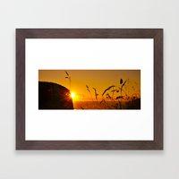 Morning Grass Framed Art Print