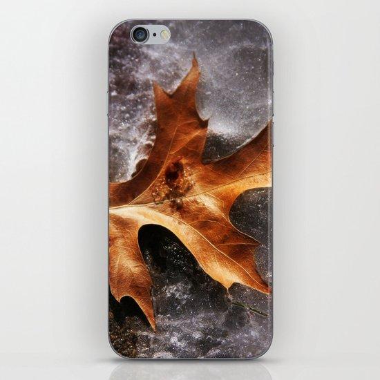 February Thaw iPhone & iPod Skin
