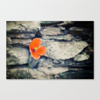 Alone Against The Wind Canvas Print