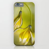 iPhone & iPod Case featuring Tulipa by Mandy Disher