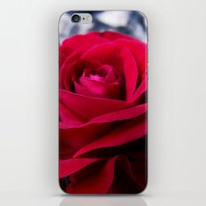 Red Valvet iPhone & iPod Skin