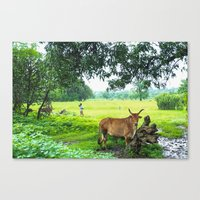 India [3] Canvas Print
