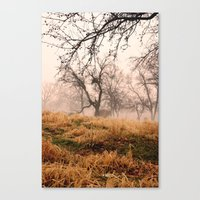 Natural Mystic In The Ai… Canvas Print