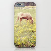 iPhone & iPod Case featuring In a Field of Wildflowers by Laura George