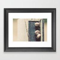 Snail family Framed Art Print