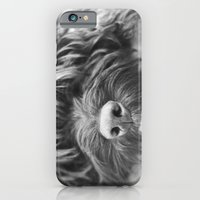 iPhone & iPod Case featuring Sleepy Head by Sarah Brighten Photography