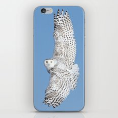 Flight of the goddess iPhone & iPod Skin