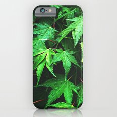 green love  Slim Case iPhone 6s