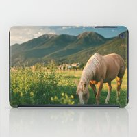 Pretty Horse Eating Grass in the Montana Sunset iPad Case