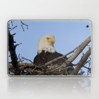 Eagle's Nest Laptop & iPad Skin