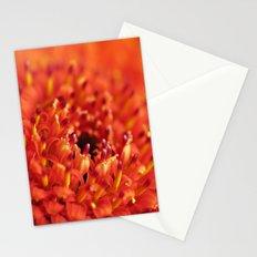 Orange Gerbera Stationery Cards
