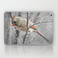 Female Cardinal Laptop & iPad Skin