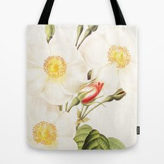 III. Vintage Flowers Botanical Print by Pierre-Joseph Redouté - Rosa Damascena Subalba Tote Bag