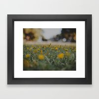 Yellow Summer Framed Art Print