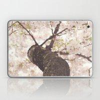 Sanctuary Laptop & iPad Skin