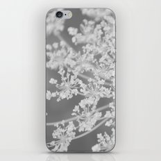 Apiaceae iPhone & iPod Skin