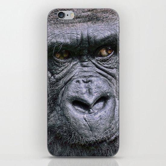 Portrait of a female Gorilla iPhone & iPod Skin