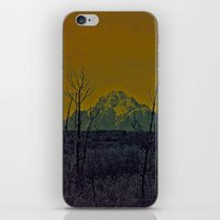 #82 iPhone & iPod Skin