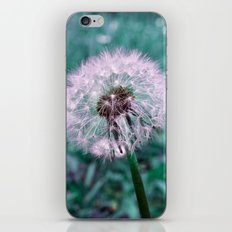 DANDELION - puffball iPhone & iPod Skin