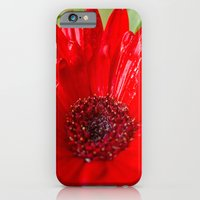 iPhone & iPod Case featuring Red Gerber Daisy by Rick Kirby
