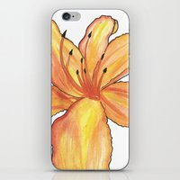 Day Lily iPhone & iPod Skin