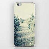 tree farm iPhone & iPod Skin