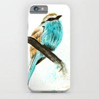 Watercolor bird iPhone 6 Slim Case