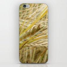 Field #1 iPhone & iPod Skin