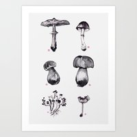 Mushroom Chart Art Print