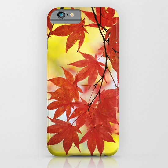Fall foliage iPhone & iPod Case