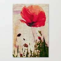 Heavy Poppy Canvas Print