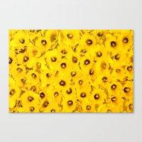 Daffodils En-masse Canvas Print