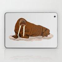 Pacific Walrus Laptop & iPad Skin