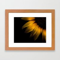 Backyard Flowers 28 Sunflower Framed Art Print