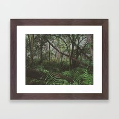 Jungle Framed Art Print